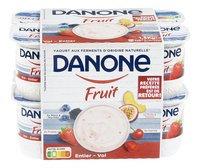 DANONE yaourt entier fruits 12x125g