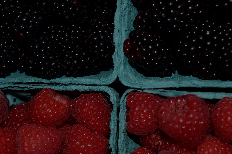 berries_edited