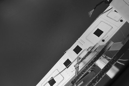 Ladder (digital file)
