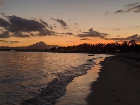Tea, sugar, age, covid and oil: A Mauritian tea story.