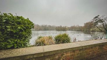 Lake Wall