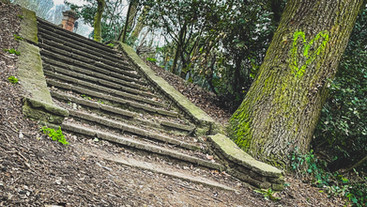 Crooked Steps