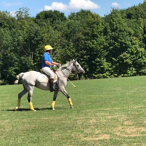Horse Exercise Lessons with Juan