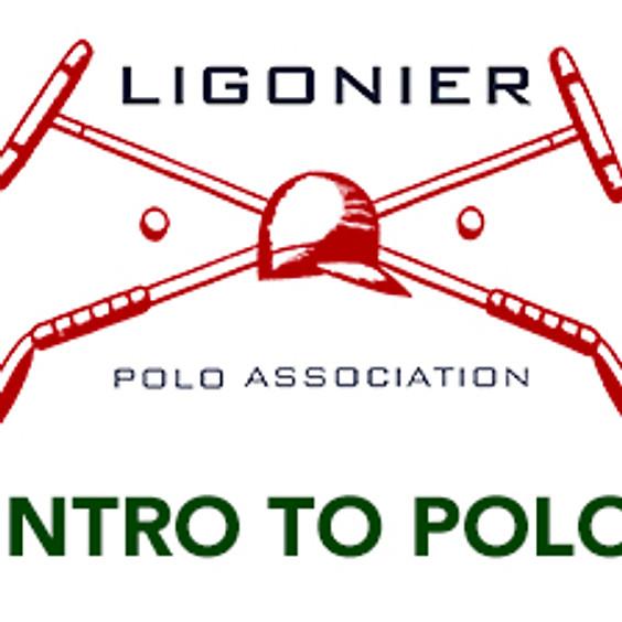 Intro to Polo