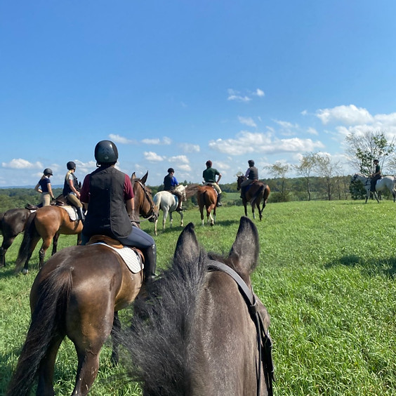 Trail Ride - Colonial Stables