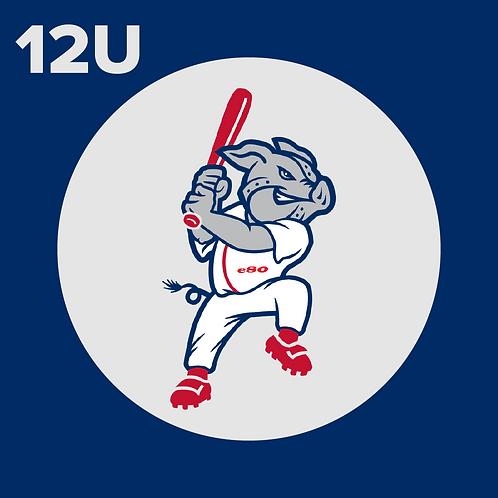 12U Player Registration