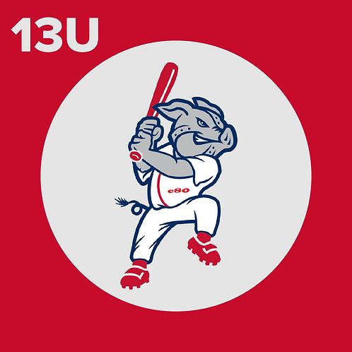 13U Player Registration