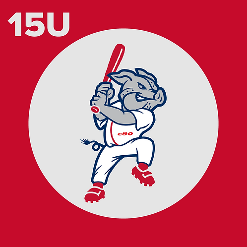 15U Player Registration