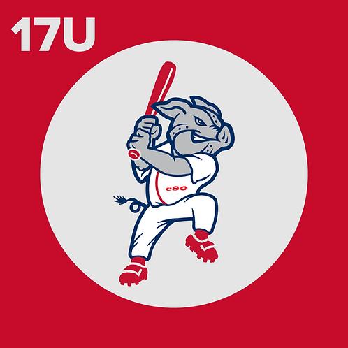 17U Player Registration