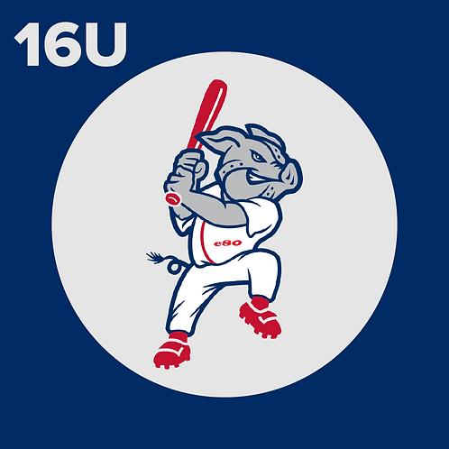 16U Player Registration
