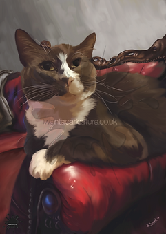 A4 Pet portrait iwantacarcature.co.uk