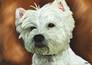 A3 Pet portrait iwantacaricature.co.uk