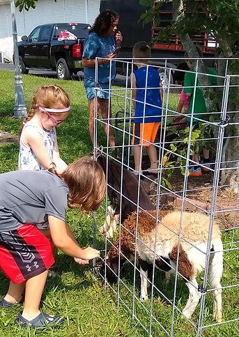 petting zoo 9.jpg