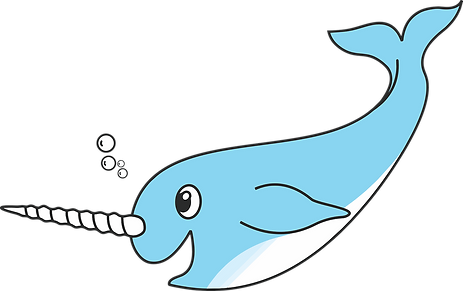 Narwhal better image.png