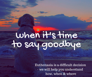 When it's time to say goodbye
