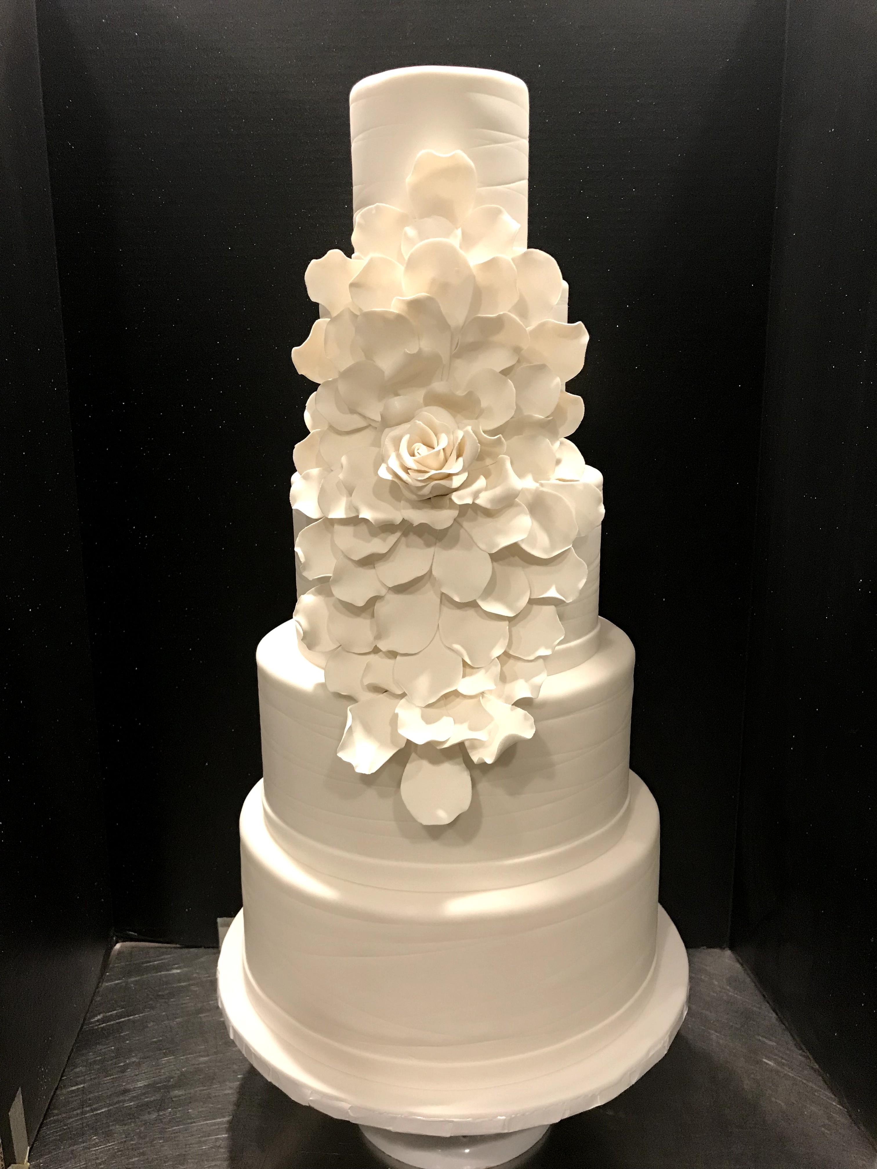 White Exploding Rose