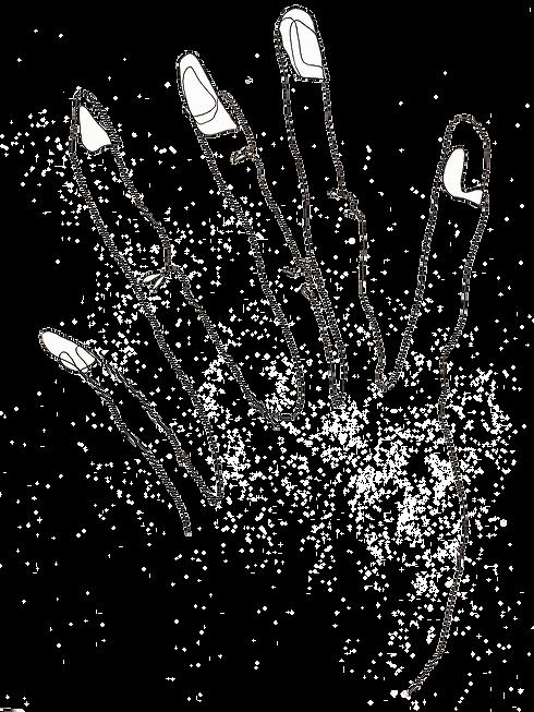 hand-contour.png