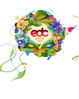 edc-removebg-preview.png