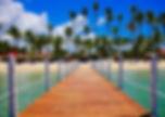 view-of-palm-trees-on-beach-247447.jpg