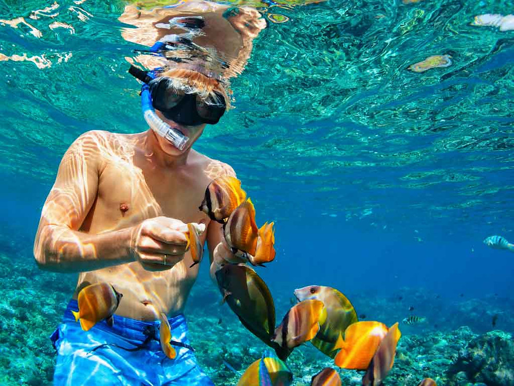 hacer snorkel en ixtapa zihuatanejo