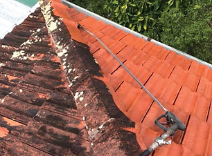 Roof Clean.png