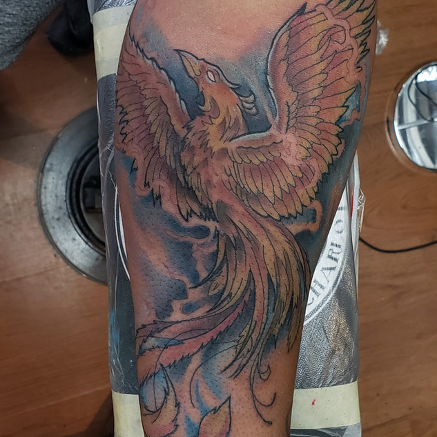 Phoenix by Defense