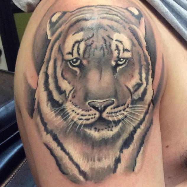 Tiger shoulder tattoo by Defense