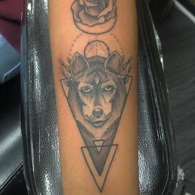 Wolf by Josh