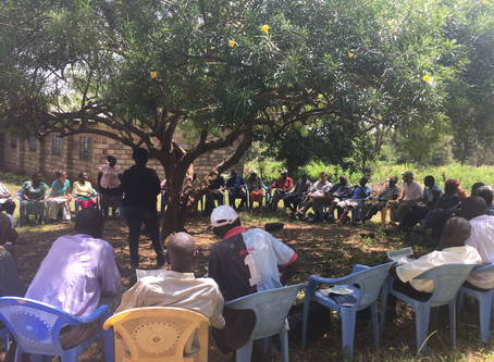 Interconnected impacts of landscape scale interventions in Kenya