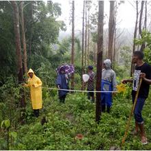 Validation of Halo Verde Timor-Leste Carbon Project