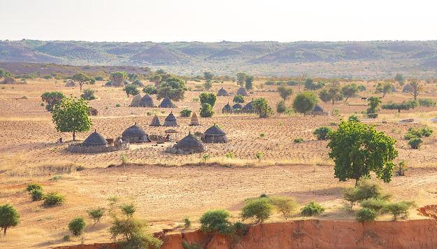 Desert of Niger, Niamey. Trees and sand