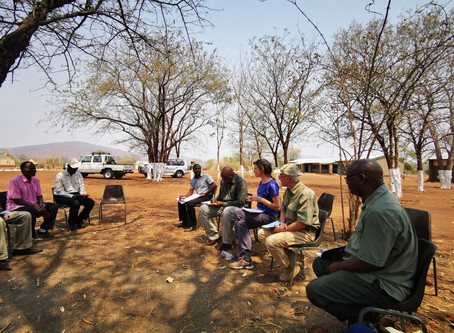 Environmental and Social Due Diligence of REDD projects in Zambia