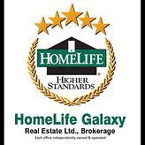 Homelife Galaxy Logo - Thileepan Ramanathan.jpg