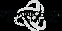 Logo - damansinghrealtor.png