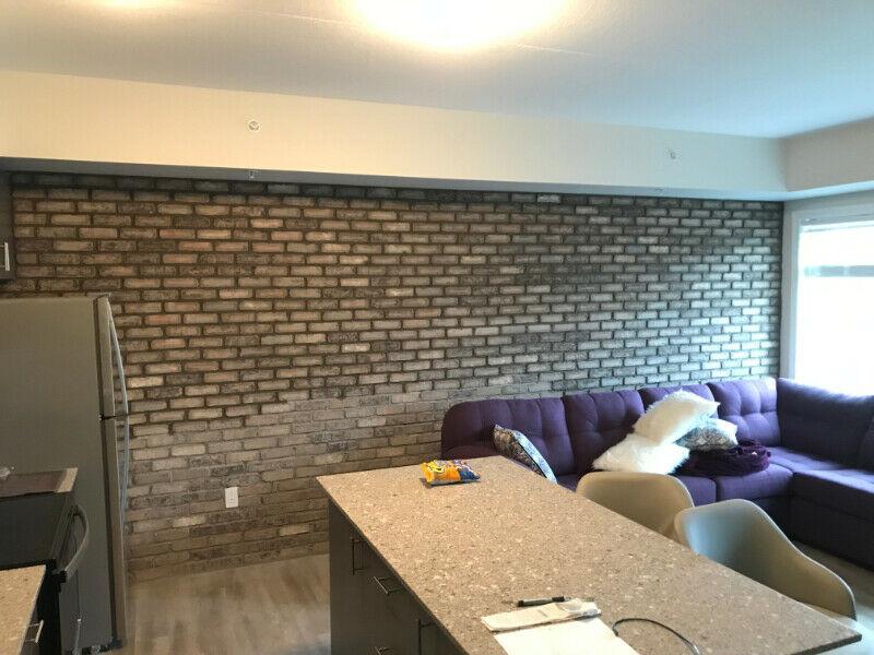 Indoor Vaneer Brick Wall