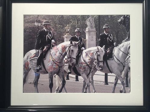 London Police Horses