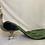 Thumbnail: XL ornate peacock