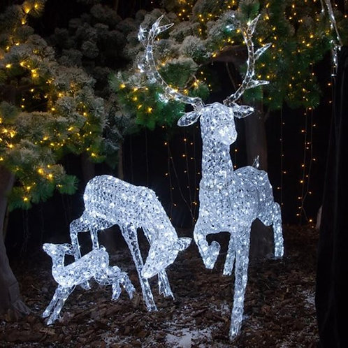 Jewelled Stag