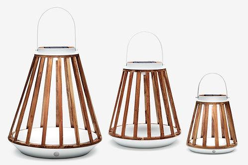 Kate Lamp