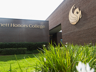 Hidden Gems: Honors Colleges