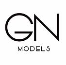 GN Models.png