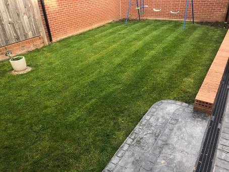 Garden Maintenance in Guisborough, Skelton, and Marske.