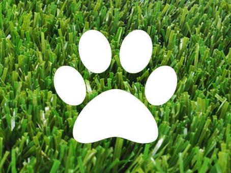 Pet friendly Artificial Lawn in Redcar