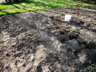 Photo-blogue : préparer un jardin