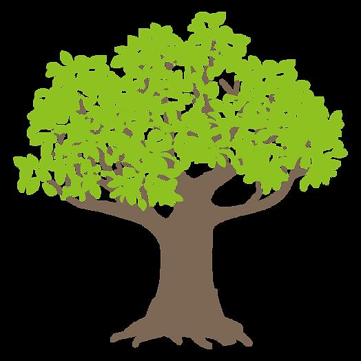 f_tree91.png