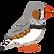 bird_kinkachou_male.png