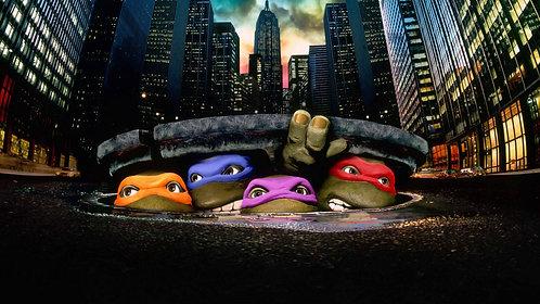 Ninja Turtles - Friday 15th