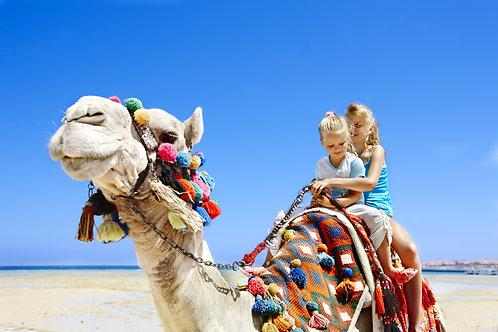 Desert Dreaming - Wednesday 7th