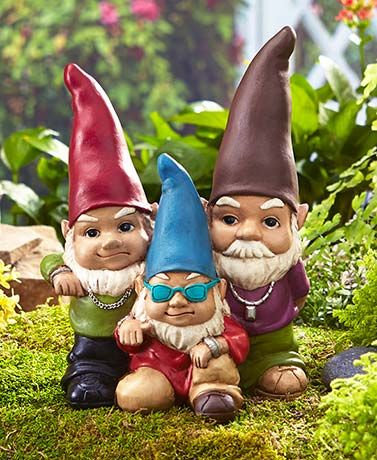 Hangin' with my Gnomies - Tuesday 6th
