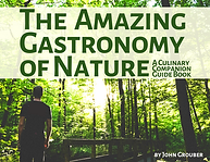 The Gastronomy of Nature (1)_edited.png